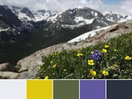 الهام گرفتن از طبیعت در طراحی سایت