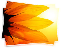 رنگ نارنچی در طراحی سایت