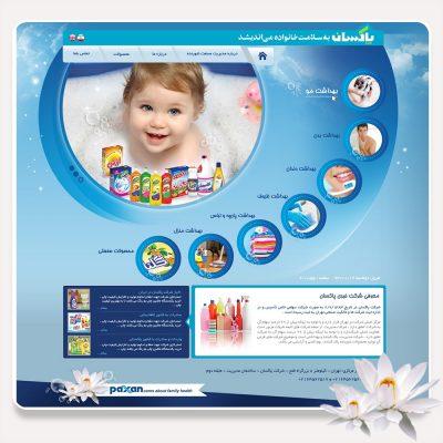 طراحی سایت شرکت پاکسان