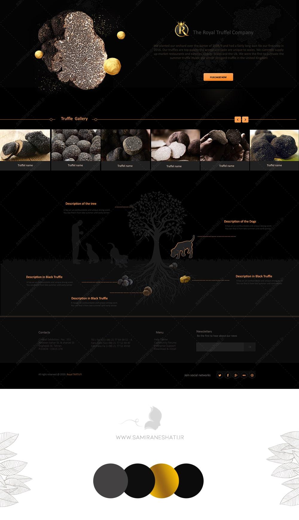 طراحی سایت ترافل سیاه